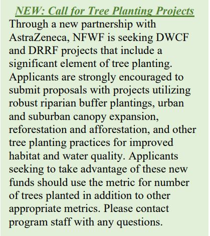 Call for Tree Planting Projects