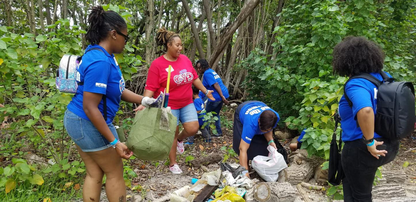 Volunteers remove debris from a park in Miami-Dade County, Florida, Credit: Phillip and Patricia Frost