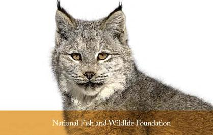 NFWF 30th Anniversary cover