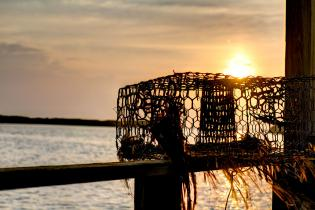 An abandoned crab pot on the Florida coast​ ​