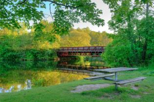 Foot bridge over the Huron River​