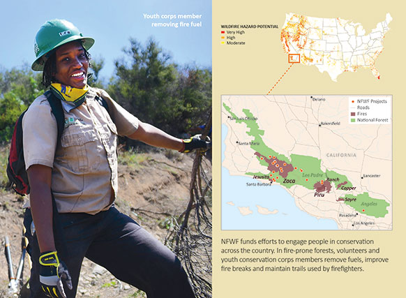 A map of where NFWF has funded conservation projects in Angeles and Los Padres national forests.